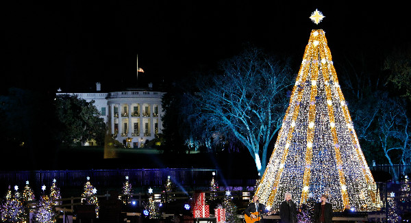 2015 National Christmas Tree